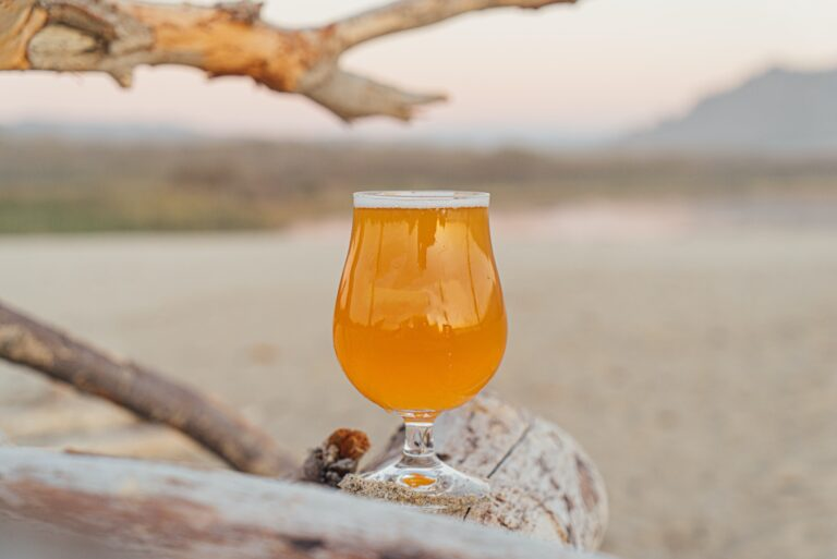 A glass of beer on a beach