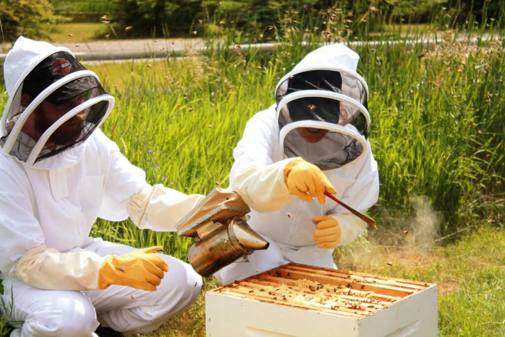 Try beekeeping for your next date in calgary this September!