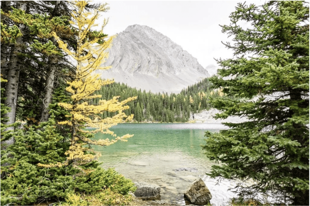 Chester Lake is stunning and a great Alberta Hike to see the Larches