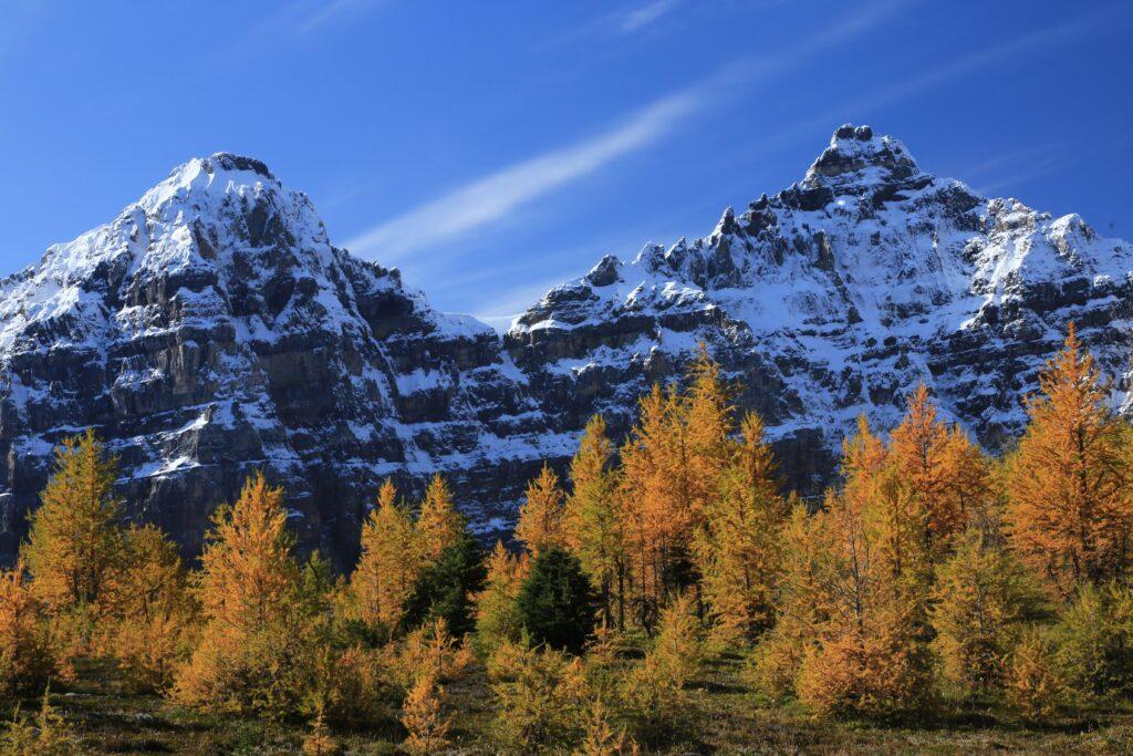 Larch Valley, Alberta