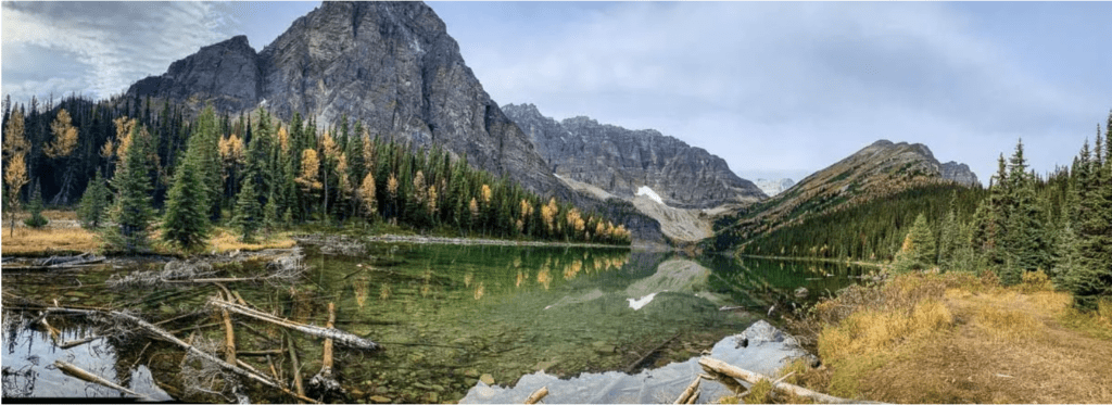 Taylor Lake is a great Alberta Hike