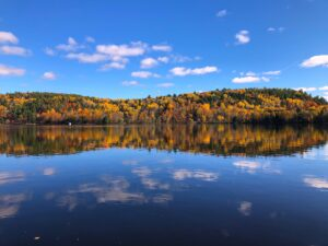 This image highlights the scenic walk along the river in the small town of Wakefield during the fall season.