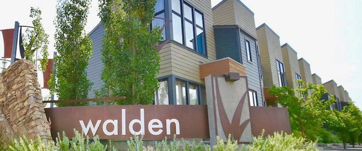 walden-3things-header